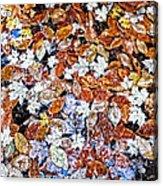 Wet Autumn Leaves Acrylic Print