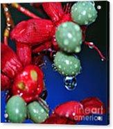 Wet Berries Acrylic Print by Kaye Menner
