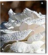 Wet Diamonds Acrylic Print