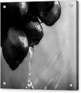 Wet Grapes Acrylic Print by Bob Orsillo
