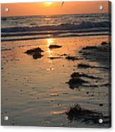 Wet Sunset Acrylic Print