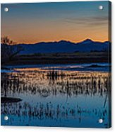 Wetland Twilight Acrylic Print