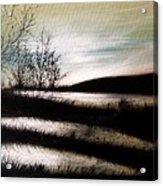 Wetland Visit Acrylic Print