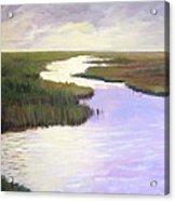 Wetlands Glory Acrylic Print