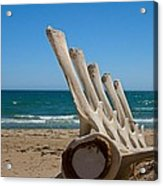 Whale Bones On The Beach Acrylic Print by Robert Bascelli
