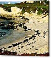 Whale Rock Beach Acrylic Print