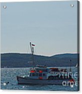 Whale Watching At Bar Harbor Acrylic Print