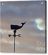 Whale Weather Vane Acrylic Print
