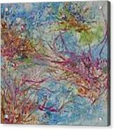 What Lives Below Acrylic Print