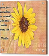 What Sunflowers Do Acrylic Print