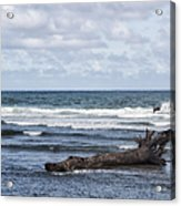 What The Sea Brought Back Acrylic Print