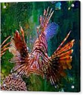 What You Looking At Acrylic Print