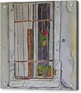 What's Behind The Window Acrylic Print