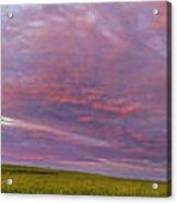 Wheat Field Sunset Panorama Acrylic Print