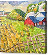 Wheat Harvest Kamouraska Quebec Acrylic Print by Patricia Eyre