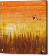 Wheatfield At Sunset Acrylic Print