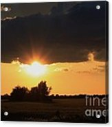 Wheatfield Sunset With Cloud's And Tree's Acrylic Print
