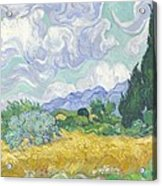 Wheatfield With Cypresses Acrylic Print