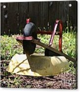Wheel Barrow In A Yard Acrylic Print by Robert D  Brozek
