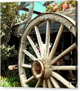 Wheels And Blooms Acrylic Print
