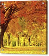 When Autumn Leaves Fall Acrylic Print