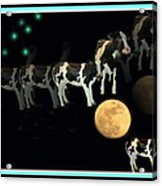 When Cows Jump Over The Moon Acrylic Print