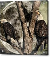 When Eagles Sing Acrylic Print