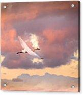When Heaven Beckons Acrylic Print