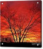 When Morning Guilds The Skies Acrylic Print