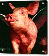 When Pigs Fly - With Text Acrylic Print by Wingsdomain Art and Photography