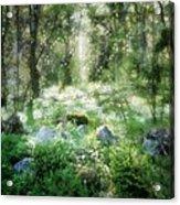 Where Fairies Dwell Acrylic Print by Gun Legler