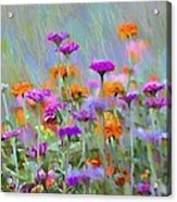 Where Have All The Flowers Gone Acrylic Print by Bill Cannon
