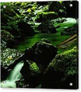 Where Solace Abounds Acrylic Print