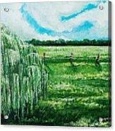 Where The Green Grass Grows Acrylic Print