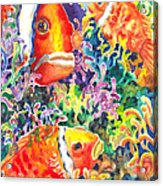 Where's Nemo I Acrylic Print by Ann  Nicholson