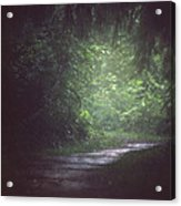 Wherever The Path May Lead Acrylic Print