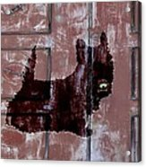 Which One Is My Dog Door? Acrylic Print