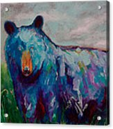 Whimsy Bear Painting Black Bear Brown Bear Wall Art Acrylic Print