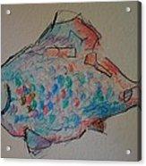 Whimsy Fish Acrylic Print