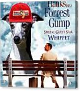 Whippet Art - Forrest Gump Movie Poster Acrylic Print