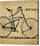 Whippet Bicycle Acrylic Print