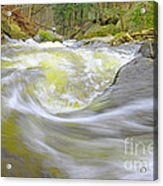 Whirlpool In Forest Acrylic Print