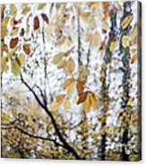 Whispers From The Treshold Acrylic Print