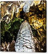 Whispers II  Acrylic Print