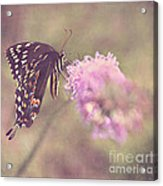 Whispers Of Nature Acrylic Print