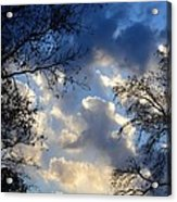 Whispers Of Winter Present Acrylic Print