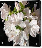 White Azalea Bouquet In Glass Vase Acrylic Print