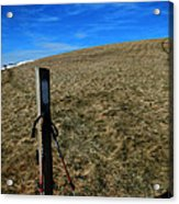 Appalachian Trail White Blaze Post Acrylic Print