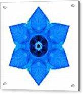 Blue Pansy II Flower Mandala White Acrylic Print