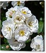 White Bouquet Acrylic Print